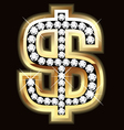 dollar bling vector image