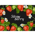 Frame with red strawberries Decorative berries vector image