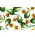 seamless background with avocado fruit vector image