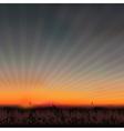 sunset grassland vector image