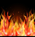 isolated realistic orange and red fire flame on vector image