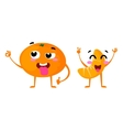 Mandarin Cute fruit character couple vector image