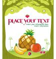fruity framework vector image