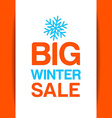 big winter sale template vector image