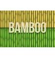 Bamboo background set vector image