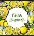 Square frame of lemons lemonade with round place vector image