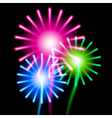 Color fireworks on black background vector image