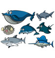 different types of sharks vector image