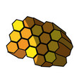 honeycomb cartoon vector image