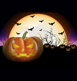 pumpkins in the night vector image