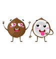 Coconut Cute fruit character couple vector image