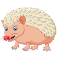 Cartoon hedgehog being looked vector image