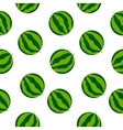 Seamless watermelon background vector image