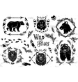 Collection of rustic decorative bears vector image