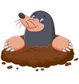 Cartoon cute mole vector image vector image