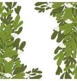 Christmas frame mistletoe with white flowers vector image