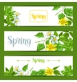 Spring green leaves and flowers Banners with vector image