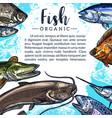poster of fish catch for fishing market vector image
