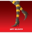 witch legs halloween background vector image