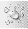 Transparent water drop vector image