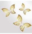 Paper Lace butterfly on gold background vector image