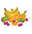bananas oranges many fruits vector image