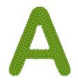 Four Leaf Clover of Alphabet Letter A vector image