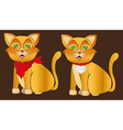 cat with accesories over brown background vector image