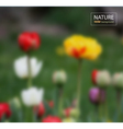 Floral blurred photo background vector image