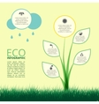 Infographic of ecology concept design with plant vector image