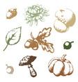 set autumn vector image