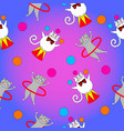 Two funny cat act in the circus vector image