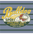 Bulldog football team vector image