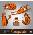 the lovable orange cats set on a vector image