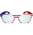 usa flag glasses vector image