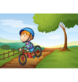 a boy and a bicycle vector image vector image