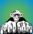 Funky Monkey vector image