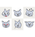 cat characters different emotions vector image