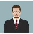 Businessman Portrait Flat Design vector image