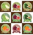 Badge Set fresh fruit pear figs avocado grapefruit vector image