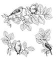 branch bird vector image