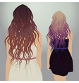 hair1 vector image