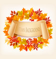 nature autumn background with colorful leaves vector image