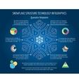 Christmas snowflakes infographics vector image