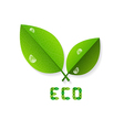 Ecology Background With Leaves vector image