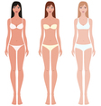 Female figure vector image vector image