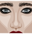Beauty Woman Face with big blue Eyes vector image