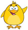 Waving Yellow Chick Cartoon vector image