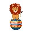 Circus lion animal cartoon design vector image