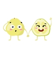 pomelo Cute fruit character couple vector image